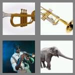 4 pics 1 word 7 letters trumpet