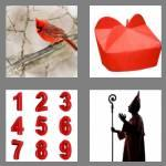 4 pics 1 word 8 letters cardinal