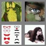 4 pics 1 word 8 letters disguise