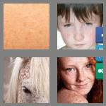 4 pics 1 word 8 letters freckles