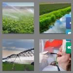 4 pics 1 word 8 letters irrigate