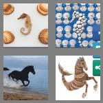 4 pics 1 word 8 letters seahorse