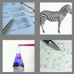 4 pics 1 word 8 letters solution