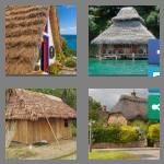 4 pics 1 word 8 letters thatched