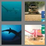 4 pics 1 word 8 letters thresher