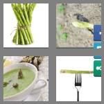 4 pics 1 word 9 letters asparagus