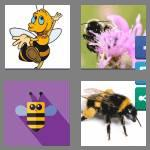4 pics 1 word 9 letters bumblebee
