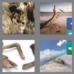 4 pics 1 word 9 letters driftwood