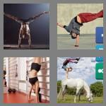 4 pics 1 word 9 letters handstand