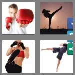 4 pics 1 word 9 letters kickboxer