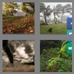 4 pics 1 word 9 letters windstorm